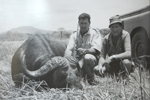 Ted kills an African cape buffalo in 1972.