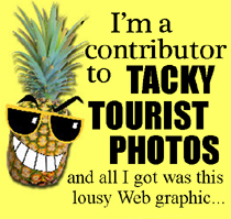 PineappleGraphicSide